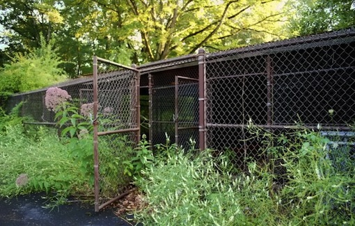 Inside Mike Tyson's Abandoned Mansion steel cage