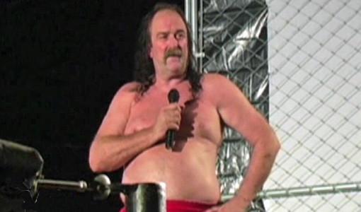 "WWE, pro wrestling, Jake ""The Snake"" Roberts, Hulk Hogan, sex tape"