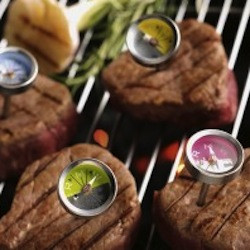 best way to grill steak, meat thermometer