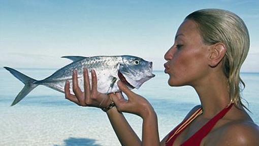 fishoil510d