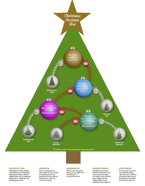 How To Choose The Bestest Christmas Tree Ever