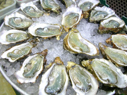 foods that boost t levels oysters