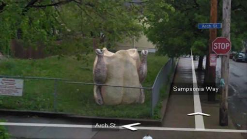 funny google earth photos turkey in yard