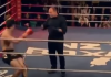 kickboxer knocked out video funny