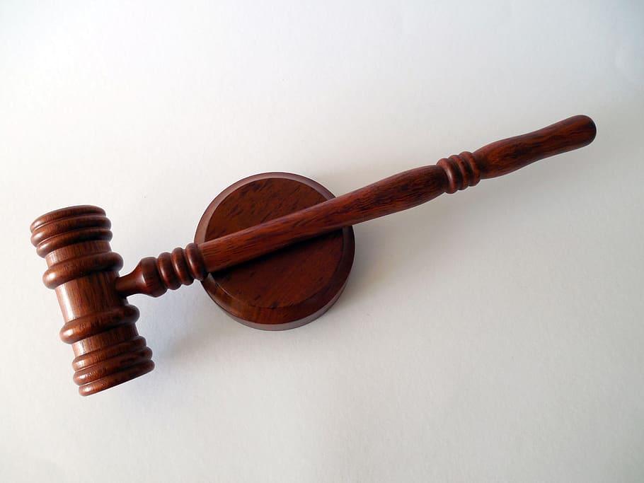 hammer books law court